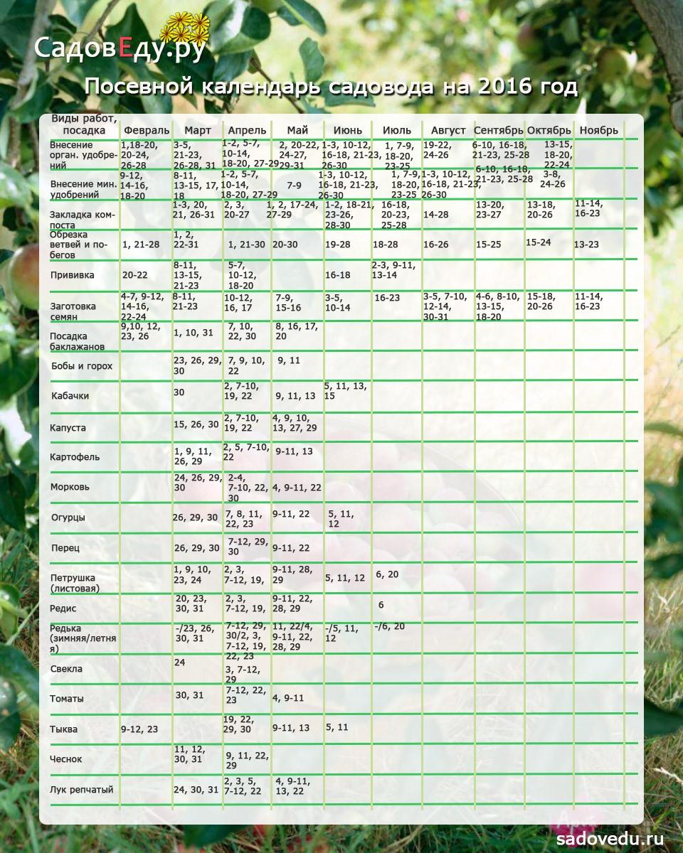 Посевной календарь садовода урала